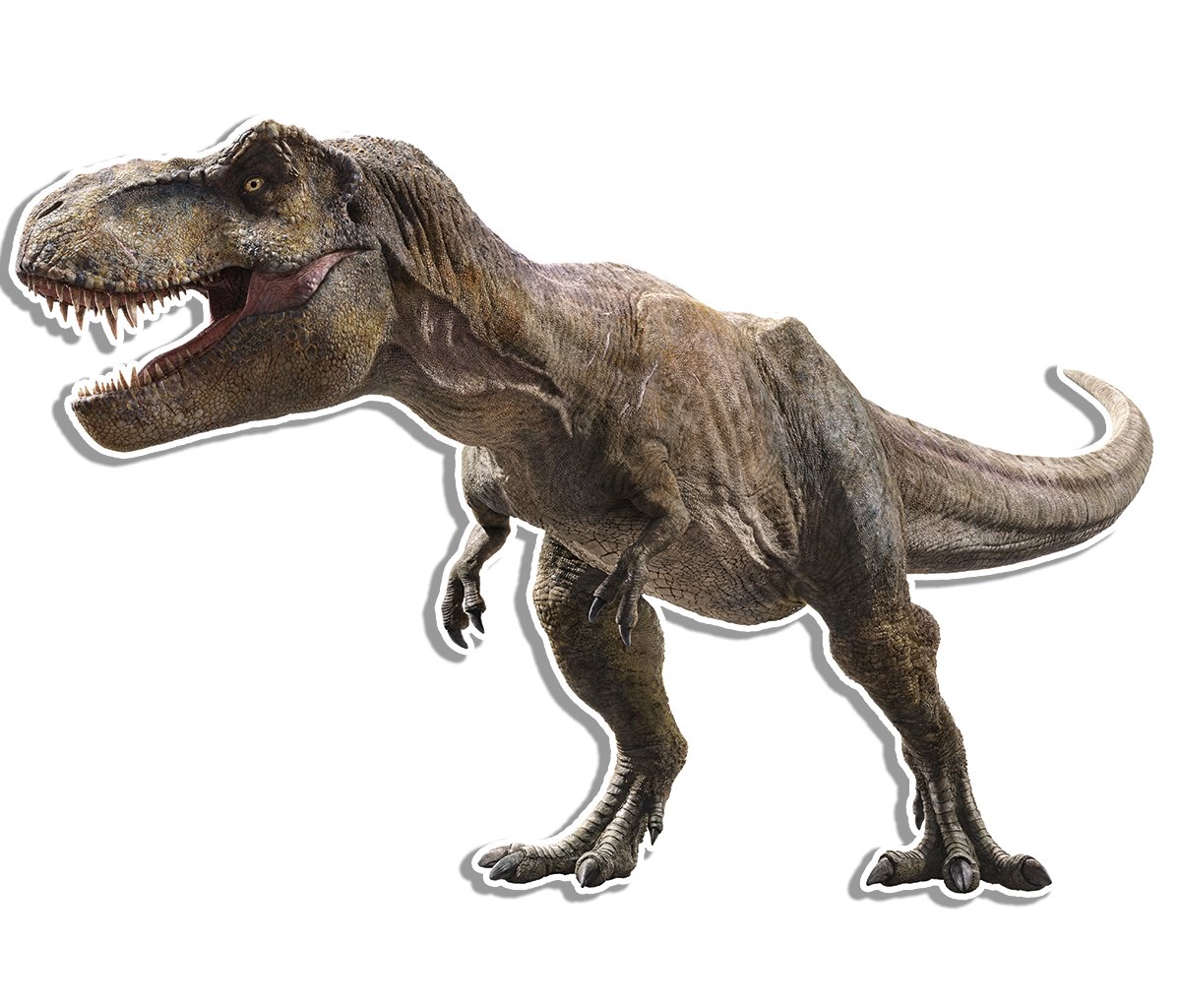 Trex png kid. Dinosaur protection group tyrant