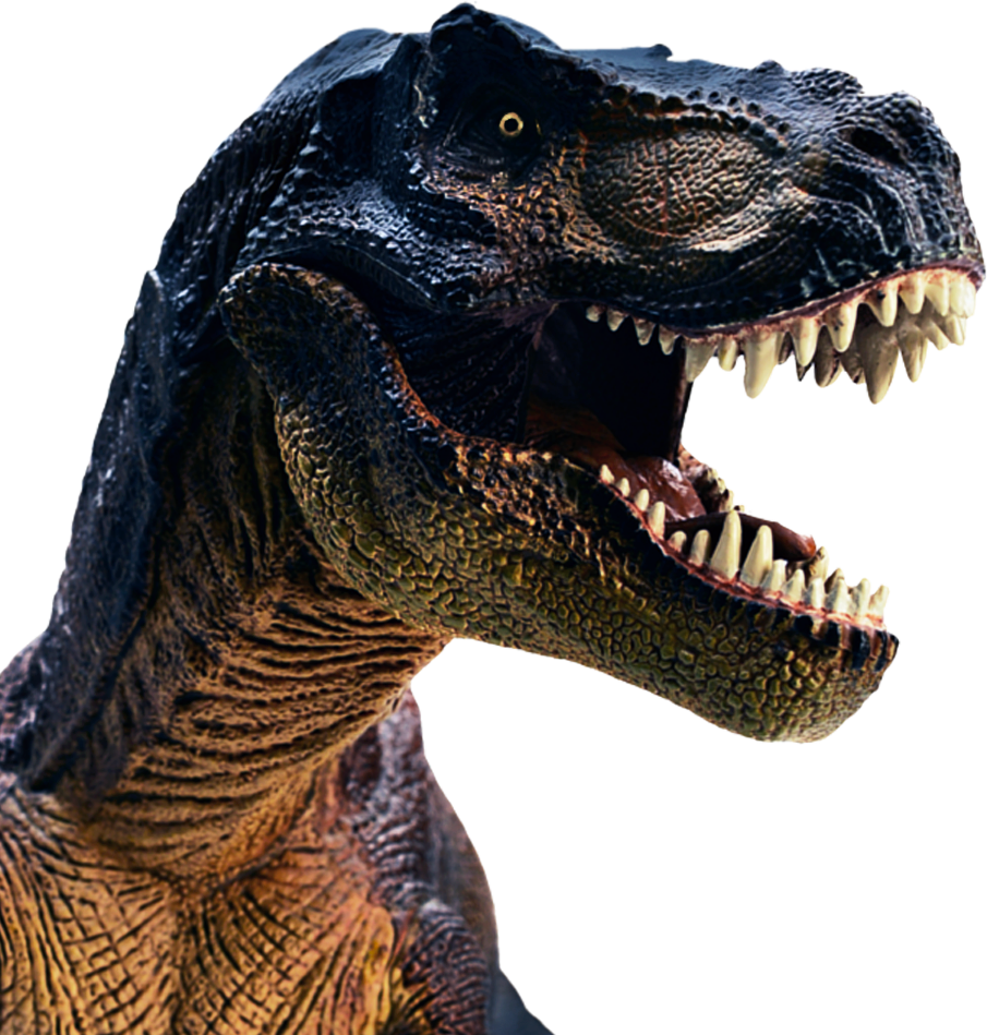 Trex png kid. Tina the world s