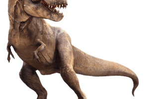 Trex png transparent. Background check all related