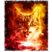 Trippy transparent cosmic. Cat in space shirt