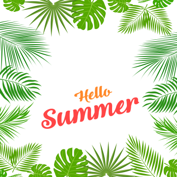 Palm tree frame png. Hello summer images vectors