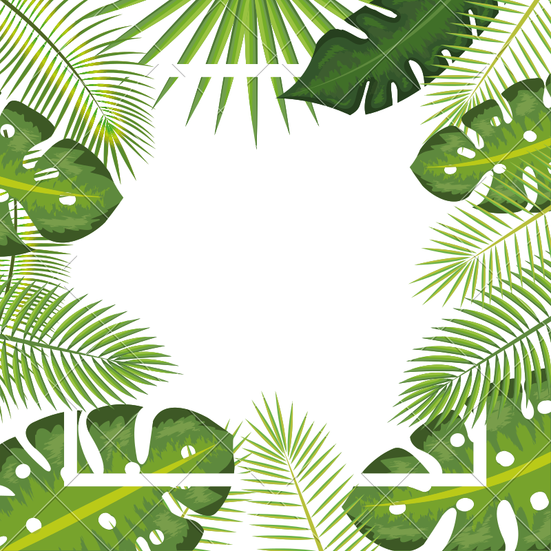 Tropical background png. Leaves frame icons by