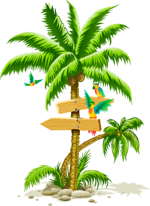 Tropical palm tree png.