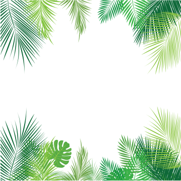 Tropical background png. Leaves images vectors and