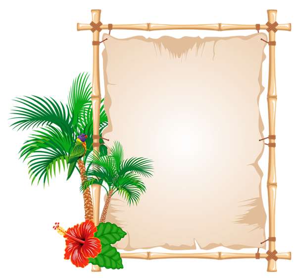 Pin by f on. Summer border png jpg stock
