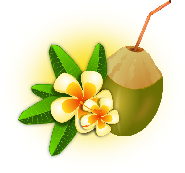 Tropical clipart png. Flower with coconut drink