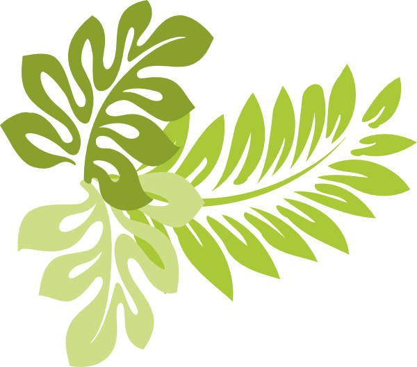 Tropical clipart png. Collection of transparent