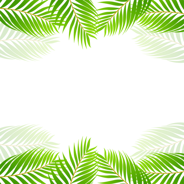 Palm print green plants white background png. Tropical leaf border vector