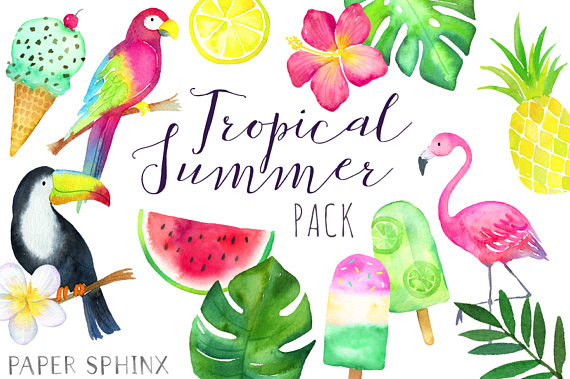 Tropical clipart tropical theme. Cilpart amusing watercolor summer