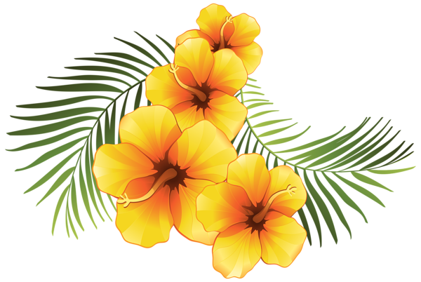 Tropical clipart tropical vine. Flower at getdrawings com