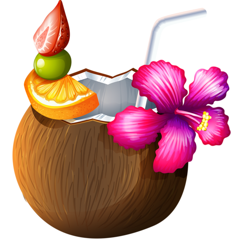 Tropical drink clipart png. Pinterest clip art