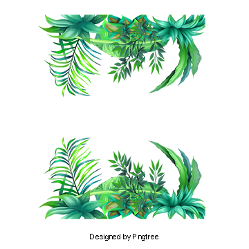 Greenery vector forest border. Tropical flower png vectors