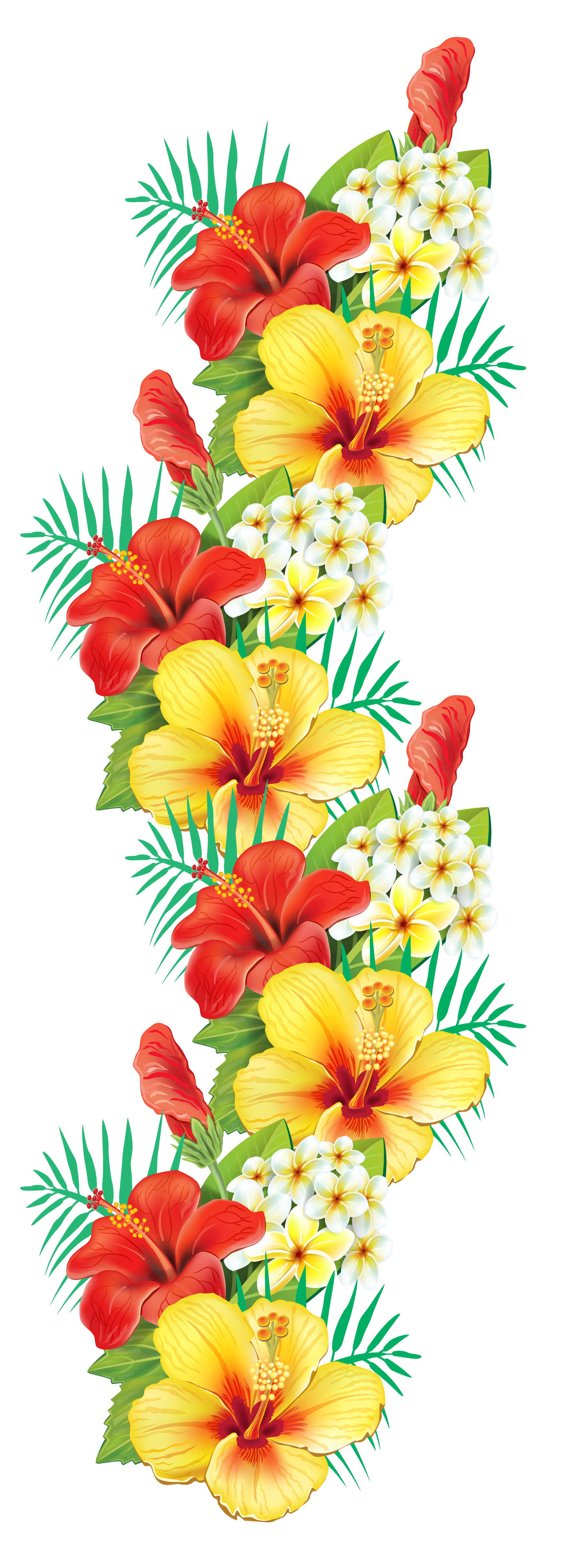 Tropical flower border png. Exotic flowers decor clipart