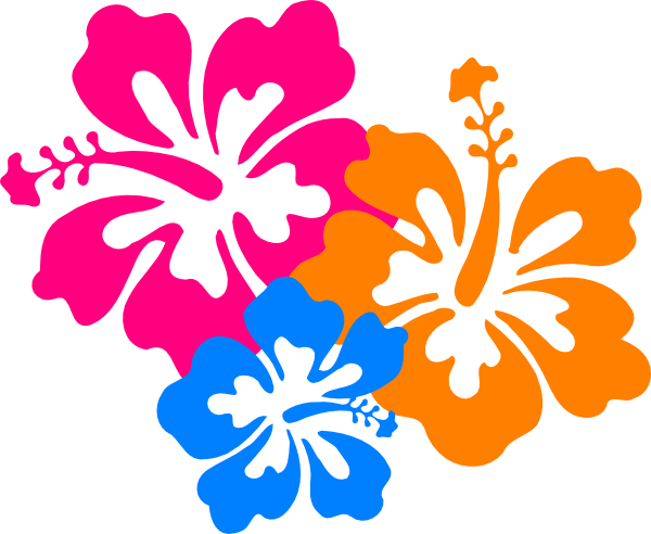 Hawaiian flowers png. Flower transparent images pluspng