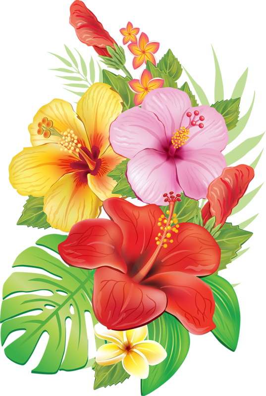 tropical flower watercolor png