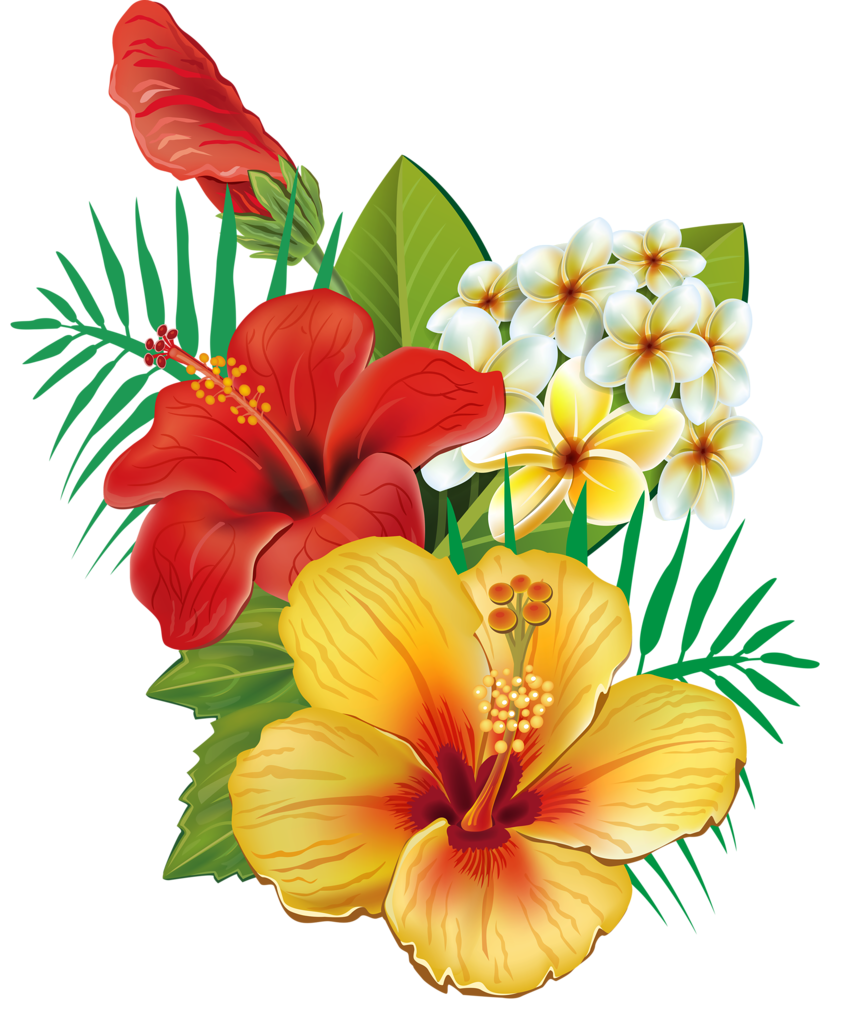 Tropical flow png clipart. Pinterest hawaiian tattoo