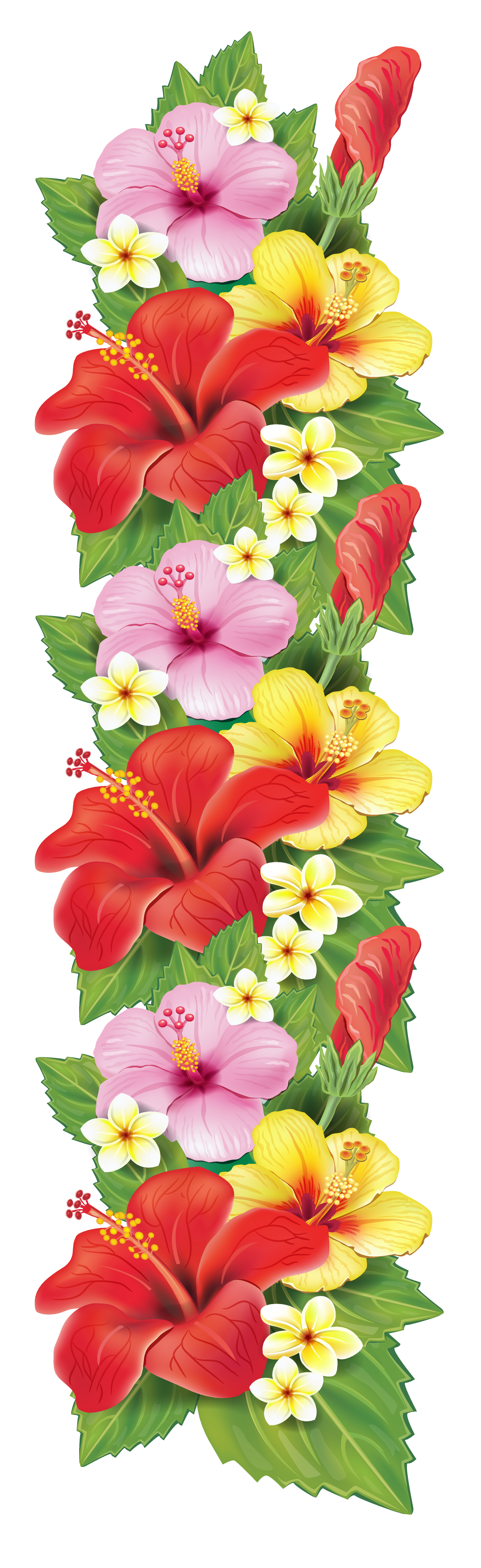 Tropical flower border png. Exotic flowers decoration clipart