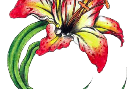 Tropical flower tattoo png. Beautiful flowers various pictures