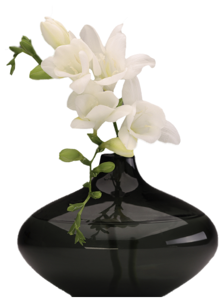 Tropical flower vase png. Black with white orchids