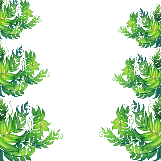 leaf vector png