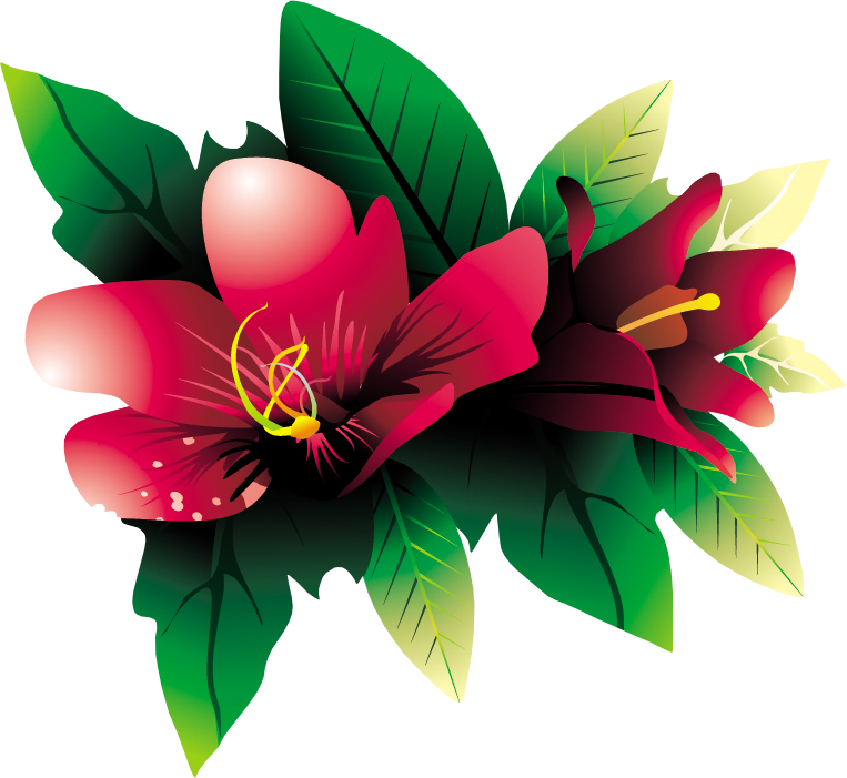 Tropical flowers clipart png. Flower hq by briellefantasy