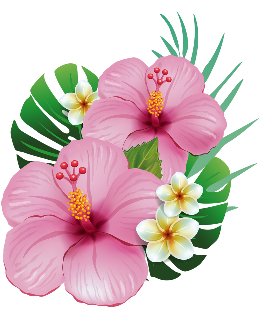 Tropical flowers clipart png. Yard my flower