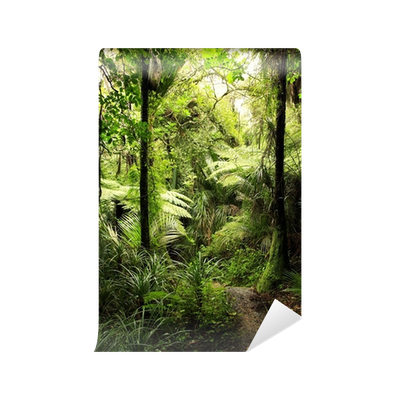 Tropical forest png. Wall mural pixers we