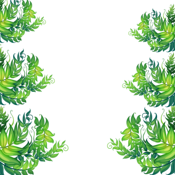 Tropical frame png. Images vectors and psd