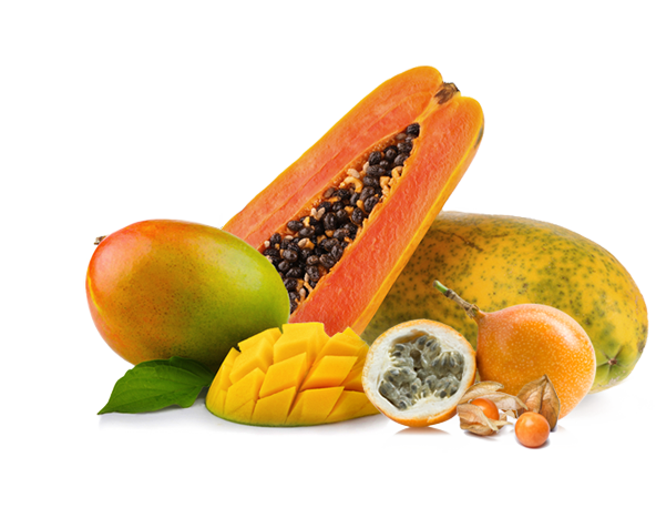 Tropical fruit png. Fresh and ripe exotic