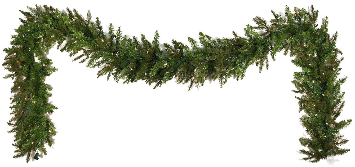 Tropical garland png. Download file hq image