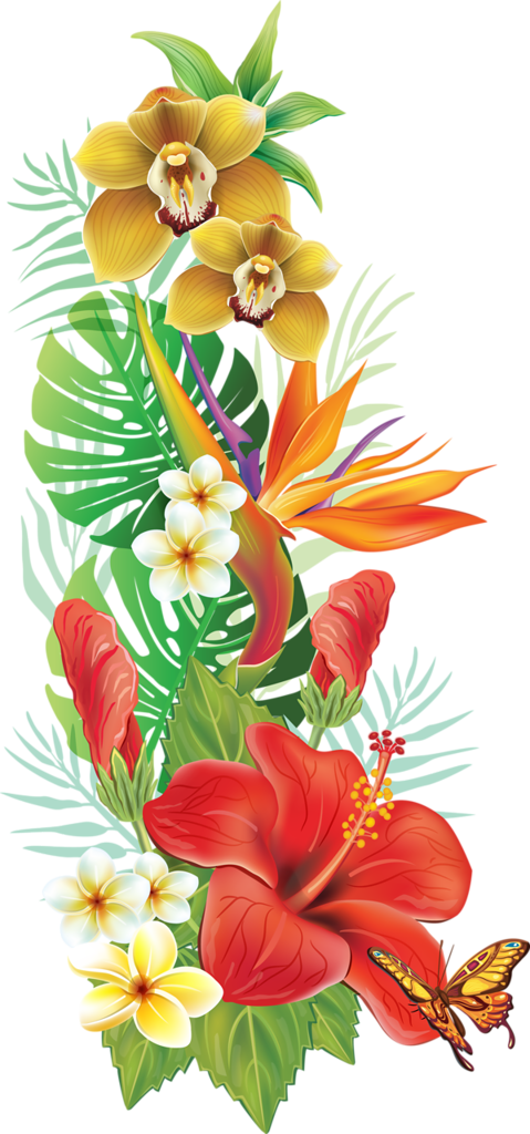 Tropical garland png. A d orig