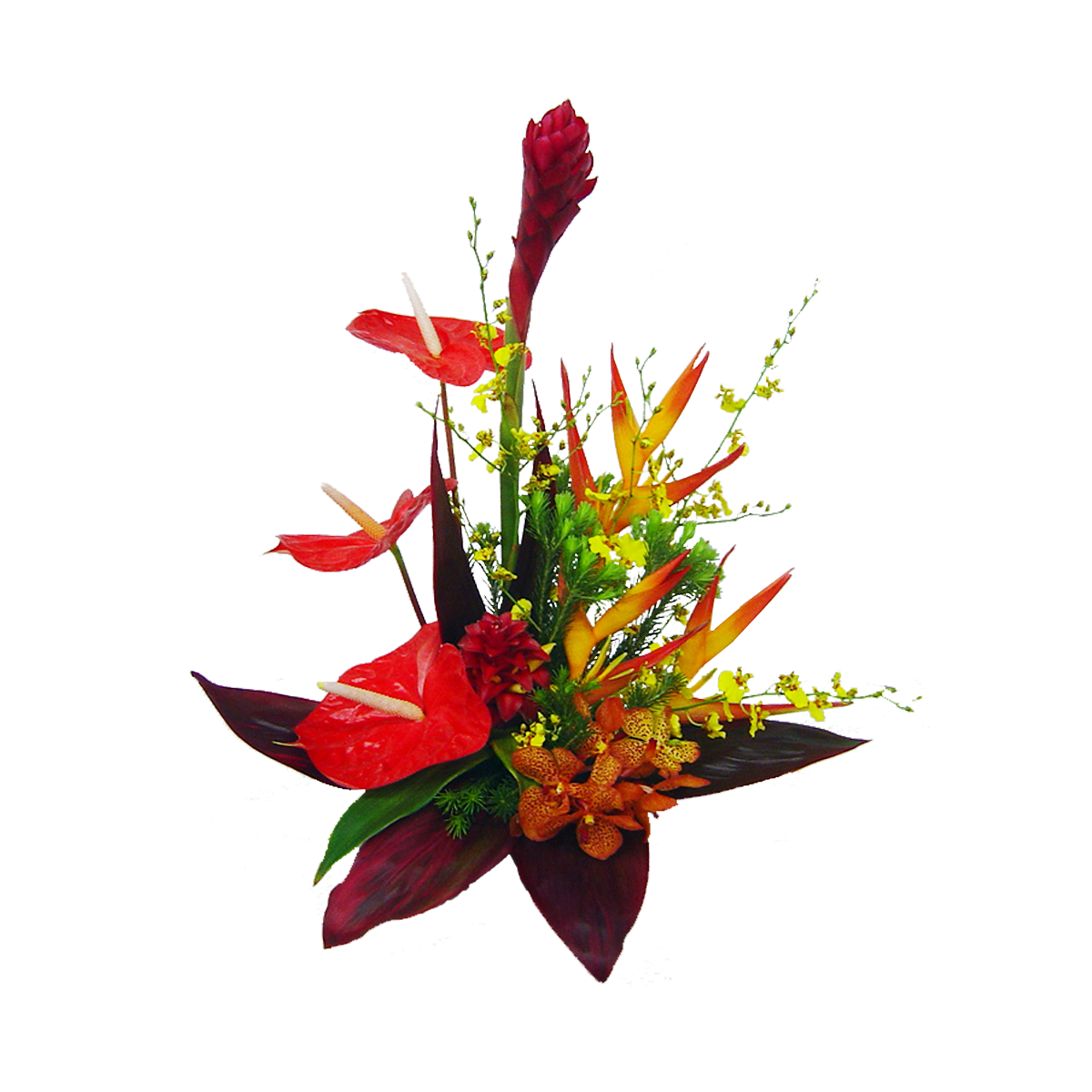 Tropical island flowers png. Bright red hawaiian bouquet