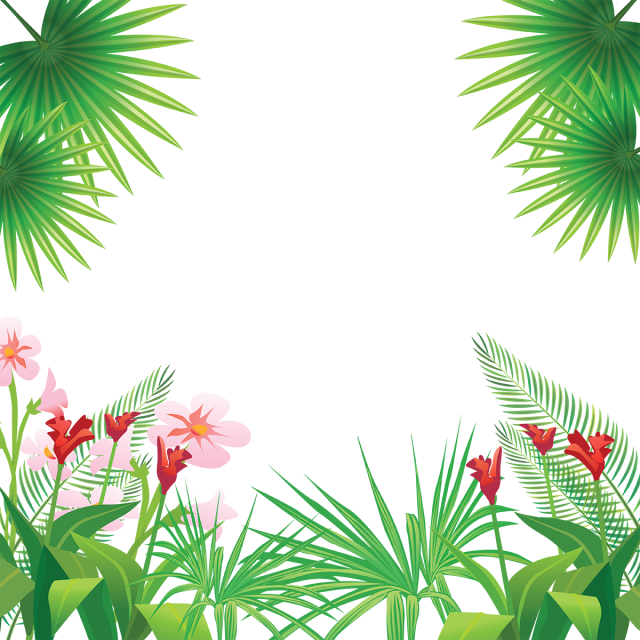 Hojas vector. Tropical leaves flowers frame