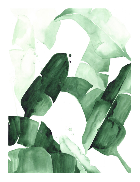 Tropical leaves watercolor png. Beverly i banana palm