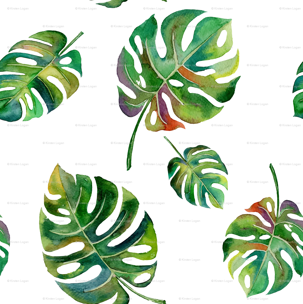 Tropical leaves watercolor png. Island palms palm wallpaper
