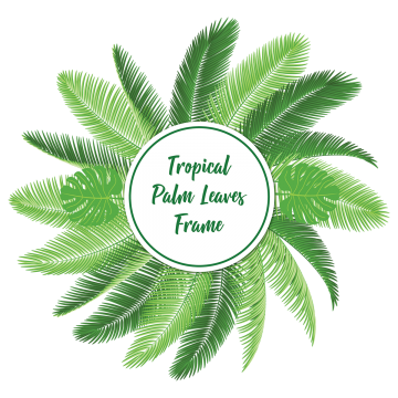 Tropical palm leaves png. Leaf vectors psd and