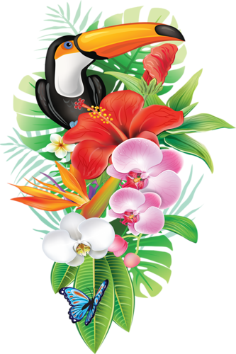 Tropical png. Flowers transparent images pluspng