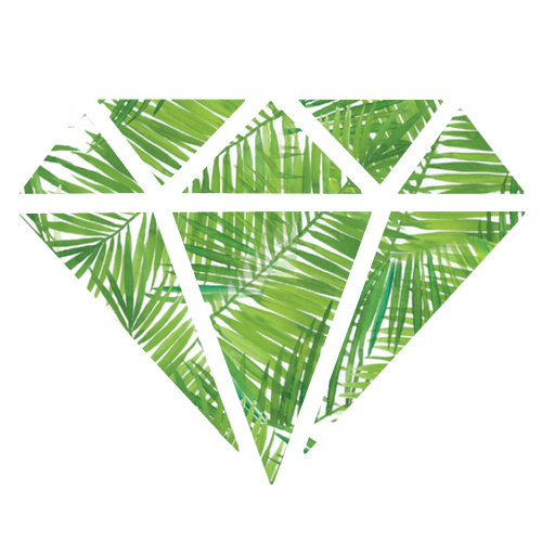 Tropical png tumblr. Group of transparent x