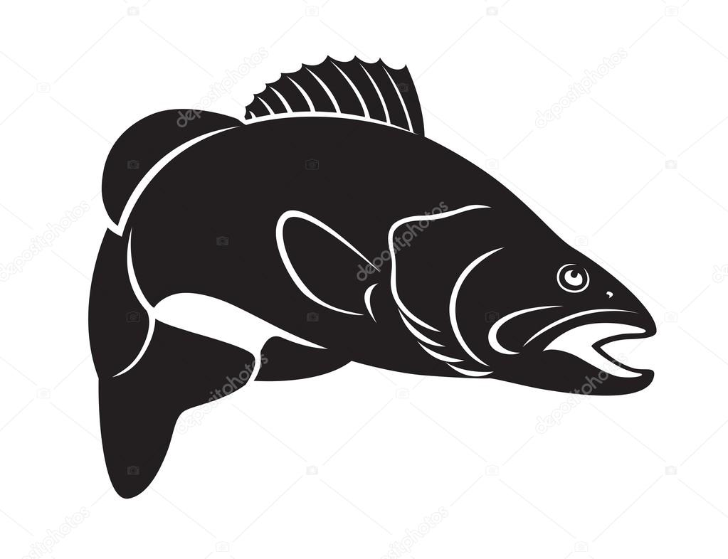 Trout clipart bass silhouette. Fish stock vector kvasay