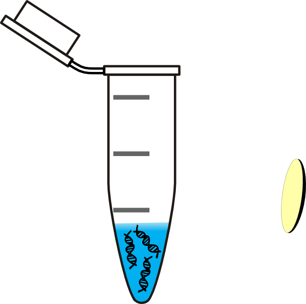 Tube clipart water testing. Dna clip art at