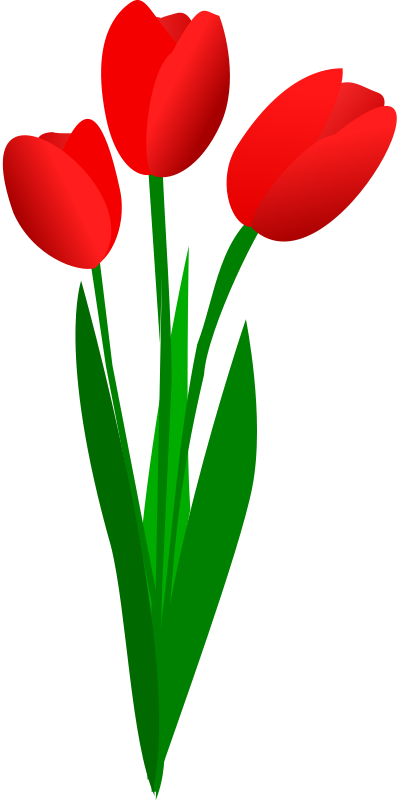 Tulips clipart. Free tulip cliparts download