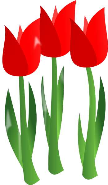 Tulips clipart. A simple drawing of