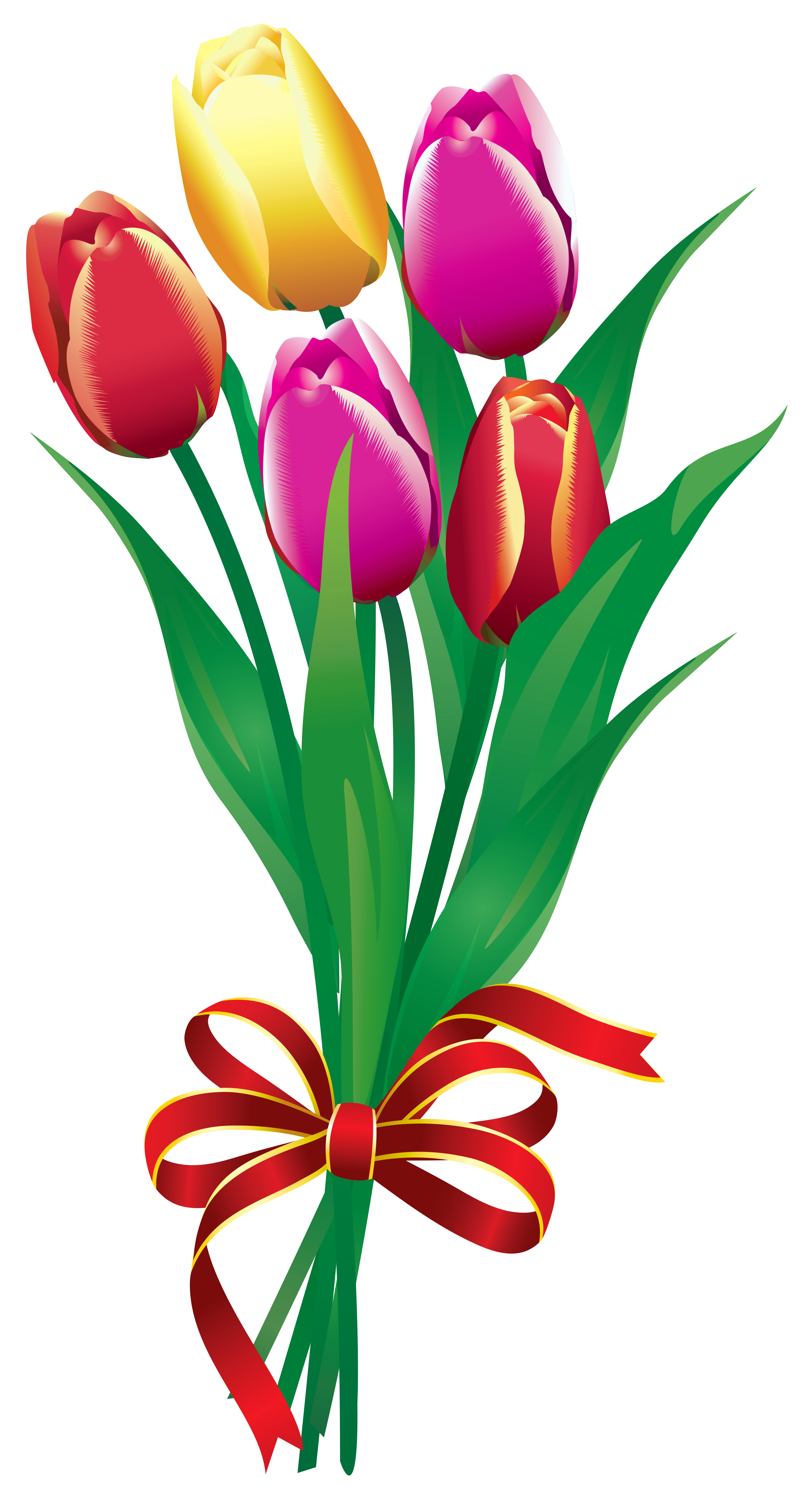 Drawing spring tulip. Bouquet clipart