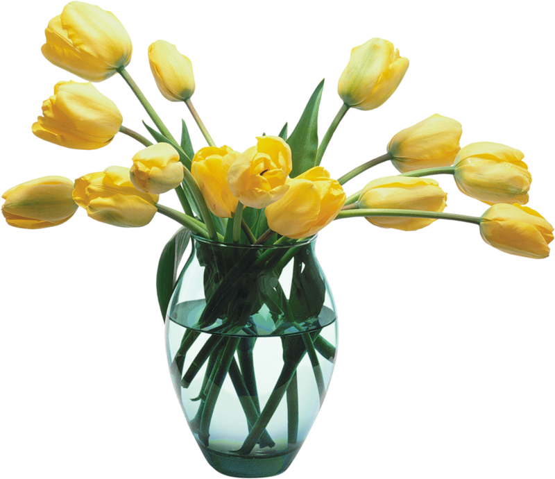 Tulip transparent vase clipart. Glass with yellow tulips