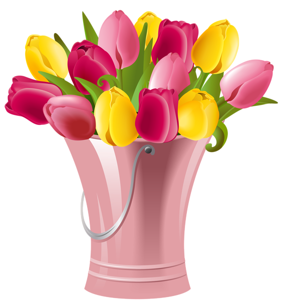 Tulips clipart. Spring bucket with transparent