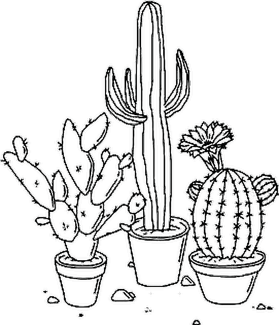 Tumbler drawing nature. Plants tumblr sticker by
