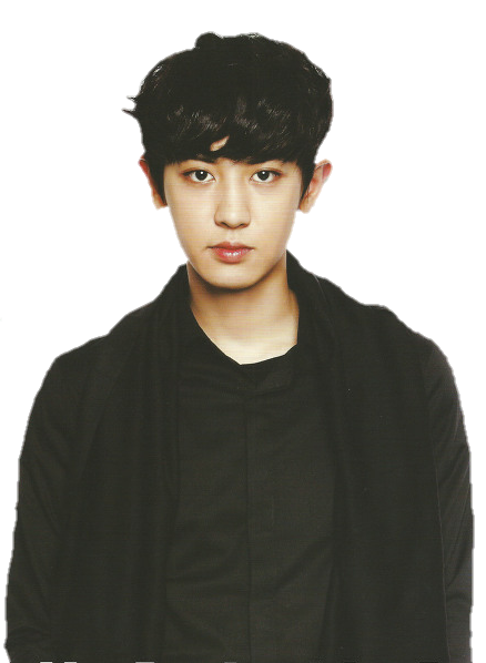 chanyeol transparent gray