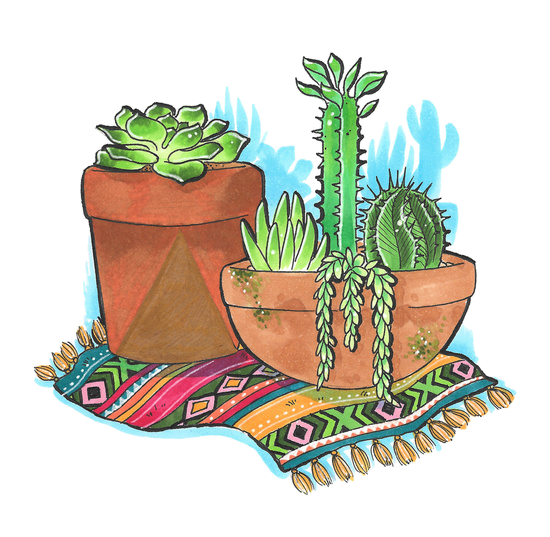 Tumblr cactus png. Edit overlay sticker by