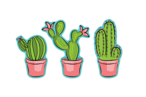 Tumblr cactus png. Image related wallpapers
