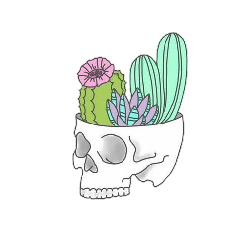 Tumblr cactus png. Image drawing animal jam image library library